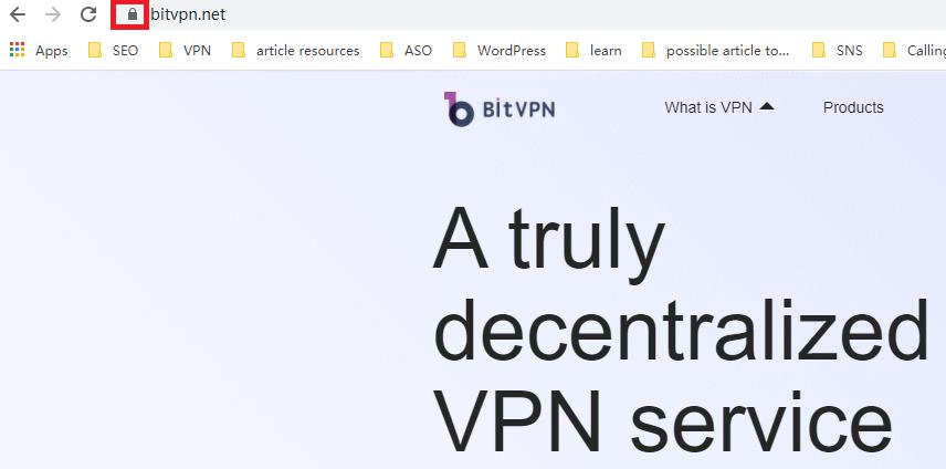 bitvpn website